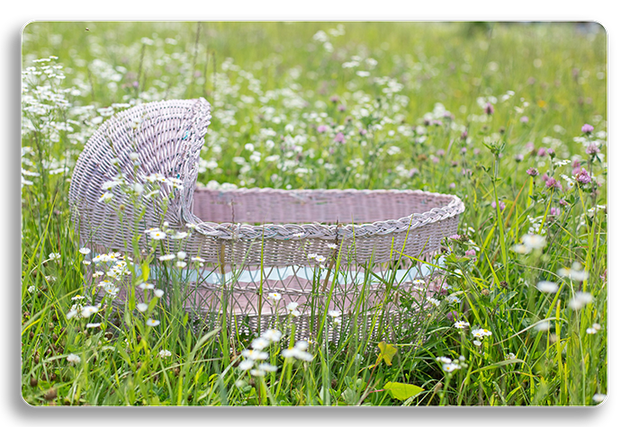 Hypnobirthing Baby basket in a field